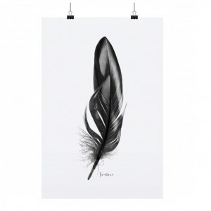 PLAKAT FEATHER TAFELGUT